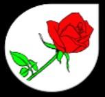Fleuriste la Diva