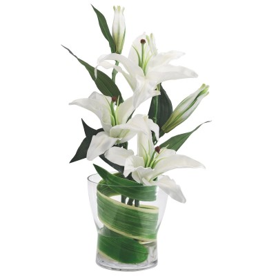 Best of lilies