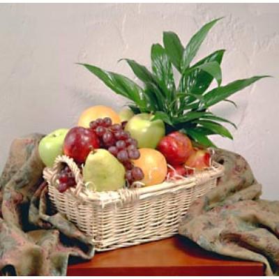 Panier de fruits et verdure