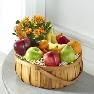 Panier de fruits coloré